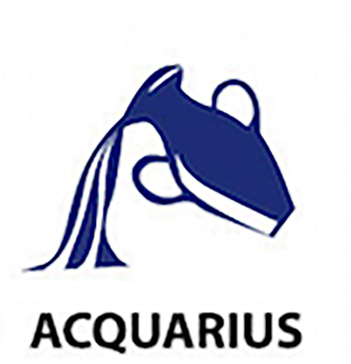 Aquarius star sign