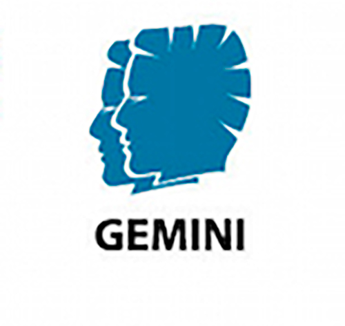 What Pokemon is a Gemini?